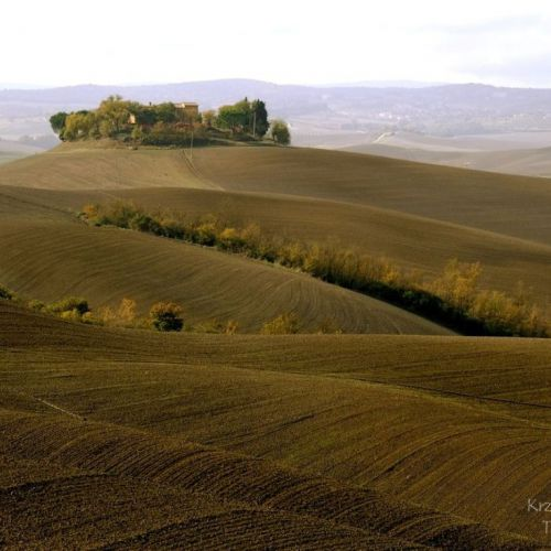 Tuscany waves